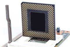 CPU-centralenhetmikrochips på håligheten Royaltyfria Bilder