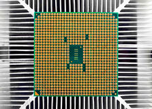 Cpu chip Royalty Free Stock Photography