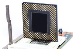 Cpu-CPUmicrochip op contactdoos royalty-vrije stock afbeeldingen
