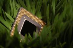 CPU en un prado verde Foto de archivo libre de regalías