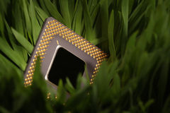 Cpu in a green meadow Royalty Free Stock Photo