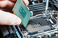 CPU in hand before installation. Into the motherboard Royalty Free Stock Image