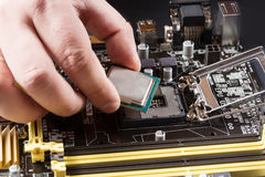 CPU in hand before installation into the motherboard. Close up Stock Images