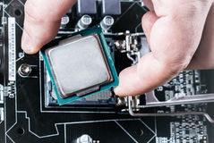 CPU in hand before installation into the motherboard. Top view.  Royalty Free Stock Photo