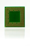 CPU isolated on a white background Royalty Free Stock Images