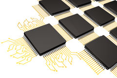 CPU Microchips as Circuit Royalty Free Stock Photo