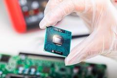 CPU-processor i hand Arkivbild