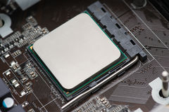 CPU in socket Stock Image