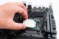 CPU socket and processor installation on the motherboard. Royalty Free Stock Image