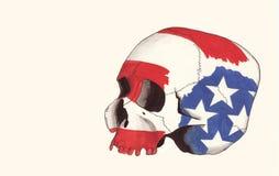 Cráneo 1 Foto de archivo