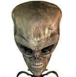 cráneo 3D Fotos de archivo
