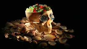 Cráneo almacen de metraje de vídeo