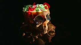 Cráneo almacen de video