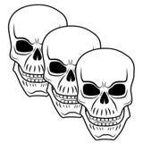 Cráneo 3 Imágenes de archivo libres de regalías