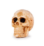 Cráneo aislado en blanco Foto de archivo libre de regalías