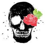 Cráneo aislado negro Foto de archivo libre de regalías