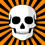 Cráneo blanco en haces anaranjados negros Imagen de archivo libre de regalías