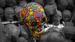 Cráneo brillante Foto de archivo libre de regalías