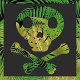 Cráneo con el fondo tropical de la hoja foto de archivo libre de regalías