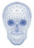 Cráneo con el modelo geométrico, vector Foto de archivo libre de regalías