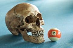 Cráneo con el número 13 Fotografía de archivo libre de regalías