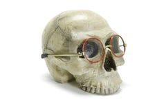 Cráneo con las lentes Imágenes de archivo libres de regalías