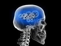 cráneo con los engranajes - idea de pensamiento de la radiografía Fotografía de archivo
