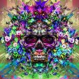 Cráneo con los vidrios, arte Imagen de archivo libre de regalías