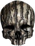 Cráneo cubierto con la corteza de árbol vieja stock de ilustración