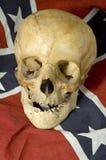 Cráneo de Dixie imagenes de archivo