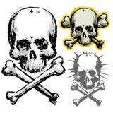 Cráneo de Grunge Fotografía de archivo libre de regalías