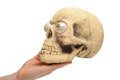 Cráneo de la explotación agrícola de la mano Imagenes de archivo