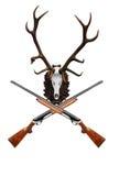 Cráneo de los ciervos con el trofeo grande del claxon imagen de archivo libre de regalías