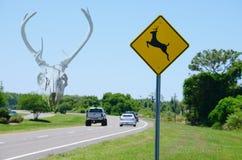 Cráneo de los ciervos de la señal de tráfico w de la travesía de los ciervos en fondo Imagen de archivo libre de regalías