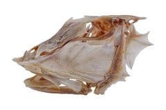 Cráneo de los pescados Fotografía de archivo