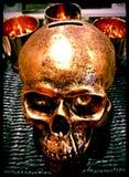 Cráneo de oro Imágenes de archivo libres de regalías