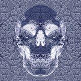 Cráneo de Roentgen del efecto Imágenes de archivo libres de regalías