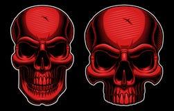 Cráneo de semitono Fotos de archivo