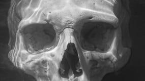 Cráneo debajo del agua Fotos de archivo libres de regalías