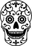 Cráneo del azúcar Imagen de archivo libre de regalías