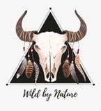 Cráneo del búfalo con las plumas ilustración del vector