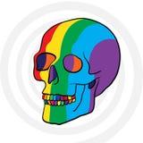 Cráneo del color Imagen de archivo