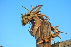 Cráneo del dinosaurio Opinión del cielo foto de archivo libre de regalías