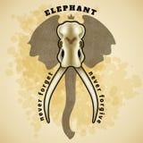 Cráneo del elefante del vector libre illustration