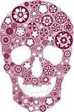 Cráneo del engranaje de la bici Imagenes de archivo