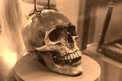 Cráneo del horror Foto de archivo