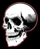Cráneo del pirata en el fondo blanco Imágenes de archivo libres de regalías