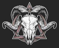 Cráneo del Ram con un símbolo geométrico Fotos de archivo