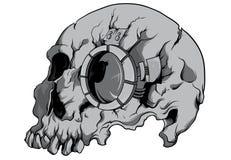 Cráneo del robot Imagenes de archivo