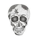 Cráneo del ser humano del vintage tatuaje Día de los muertos ilustración del vector